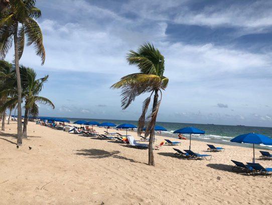 Las Olas Ft Lauderdale